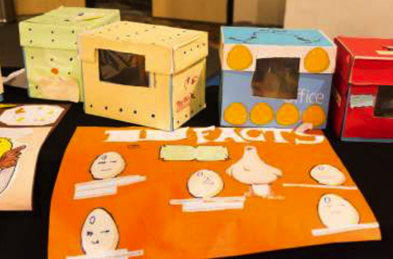 Students build their own incubators for the chicks